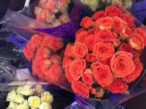 Spray Roses $18.95 per bunch