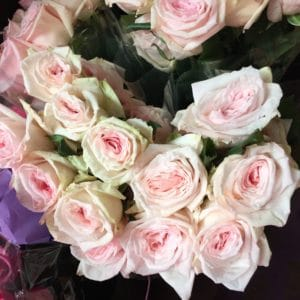 Garden Roses $17.50 per dozen