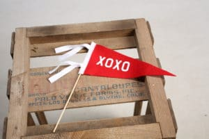 XOXO Pennant $9