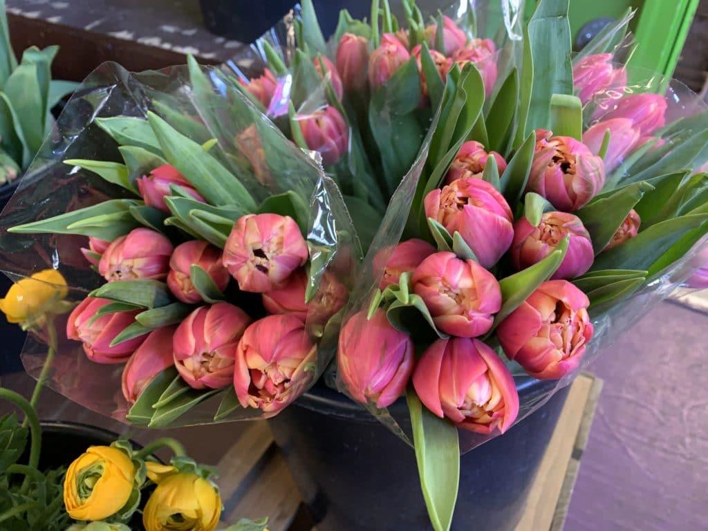 Double Tulips $14.95 per bunch